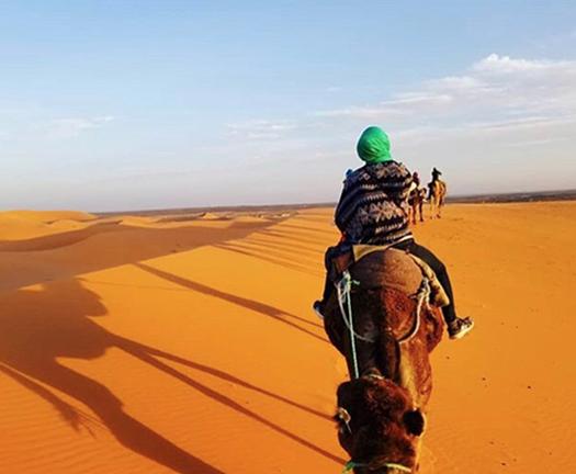 Morocco Study Abroad