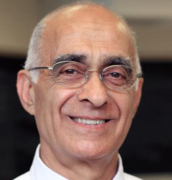 Mehdi Razzaghi