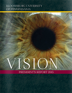 Vision Report 2015