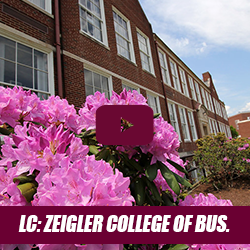 bloom bound - learning communities - zeigler college of business