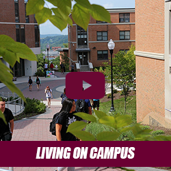 bloom bound - living on campus