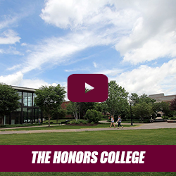 the honors college