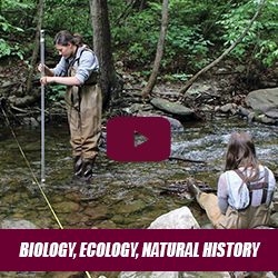 Academic Session - Biology/Ecology/Natural History Freshman Orientation with Dr. Angela Hess