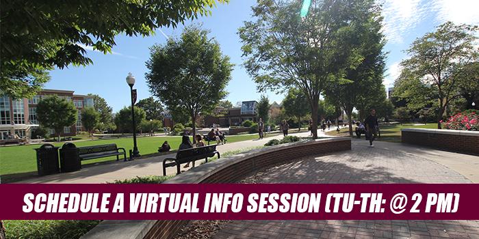virtual sessions - PM