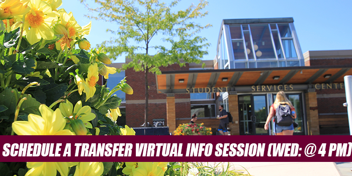 transfer virtual sessions - wednesday at 4 pm