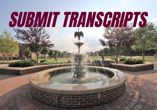 submit your final transcripts